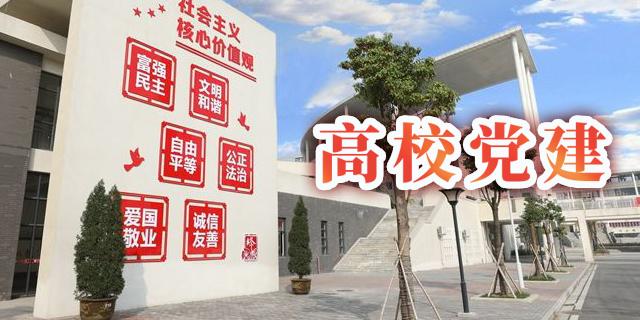 内蒙古高校党建系统开发,高校党建