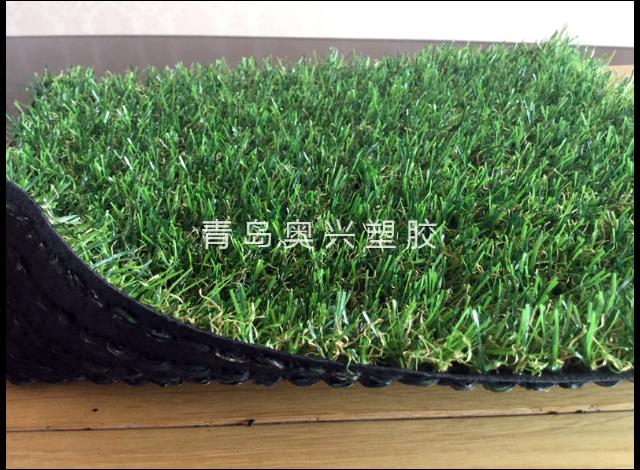 淄博圍擋草坪施工公司 信息推薦「青島奧興塑膠供應」
