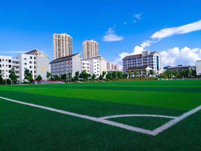 淄博运动场草坪