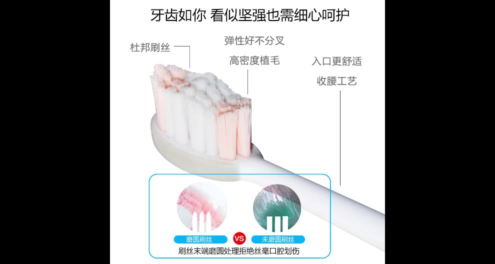 上海電動牙刷怎么樣 服務至上 深圳奧又美云健康科技供應