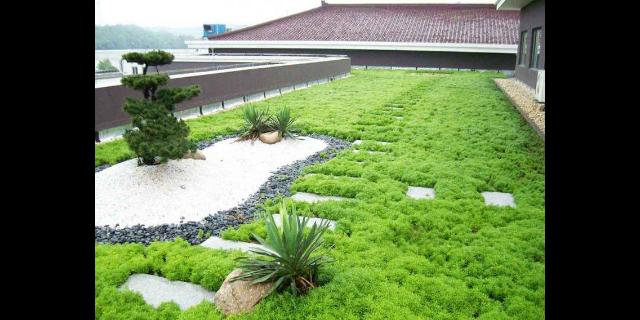 唐山小区绿化承包「保定佳创园林绿化工程供应」