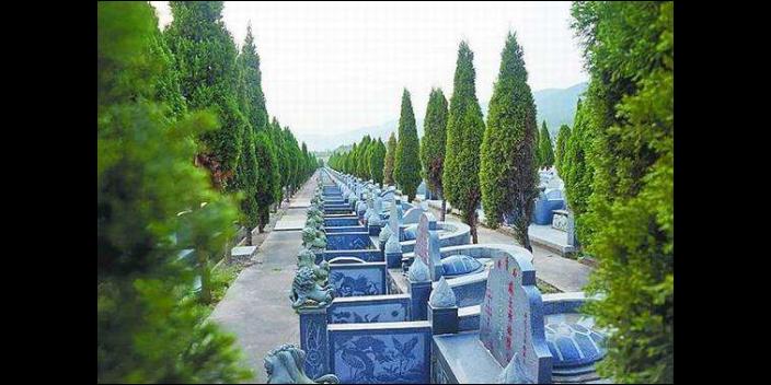 老滬閔路益善殯葬運輸服務一條龍報價 來電咨詢「上海蕓豪殯葬服務供應」