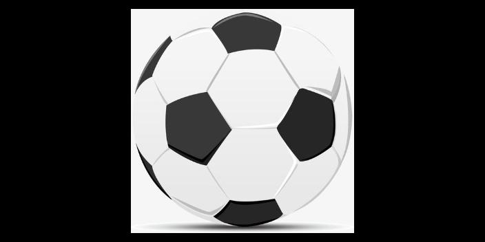 无锡风格足球基本知识用品「思德行」