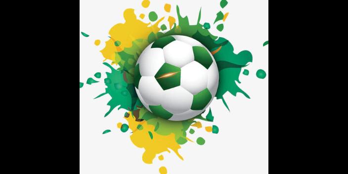 錫山區標準足球基本知識服飾「思德行」