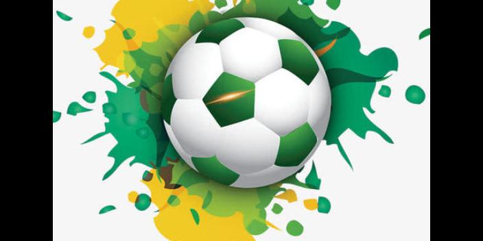天心区标准足球供应「思德行」