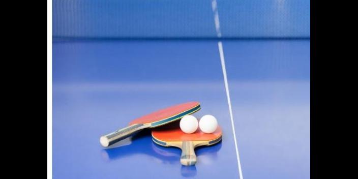 淥口區休閑乒乓球握拍方法市場報價「思德行」