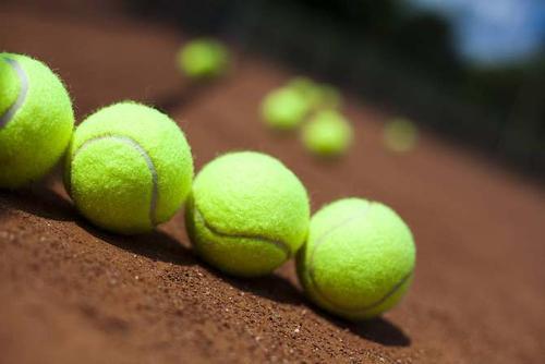 迎泽区特点网球计分方法联系人