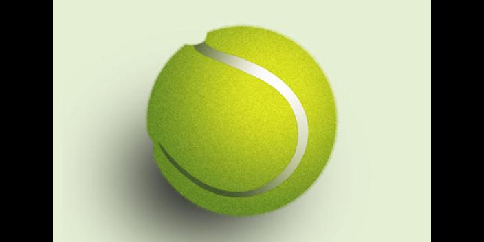 萬柏林區綜合網球計分方法二手價格「思德行」