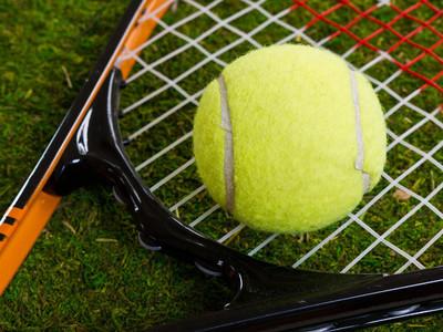 宝坻区简约网球规则销售价格,网球规则