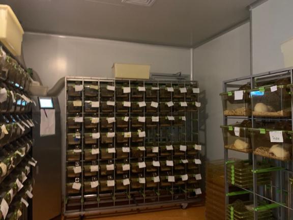 云南整體課題外包公司價格 來電咨詢「杭州鉑賽生物科技供應」