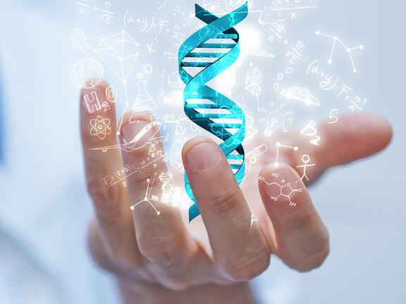 福建職業醫藥網絡藥理學分析 歡迎咨詢「杭州鉑賽生物科技供應」