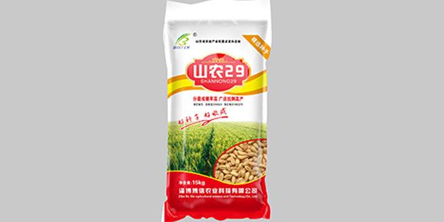 河北藁優5218小麥種子報價「淄博博信農業科技供應」