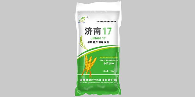 德州強筋小麥種子廠家直供「淄博博信農業科技供應」
