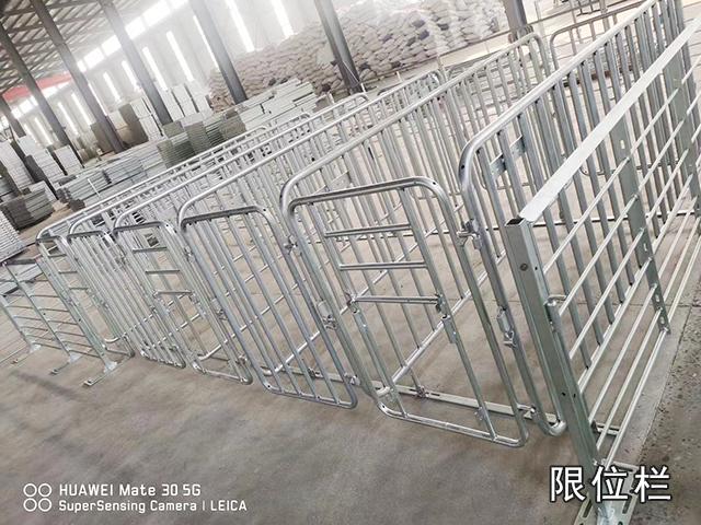 江苏母猪用限位栏哪家好 泊头市华农农牧机械供应