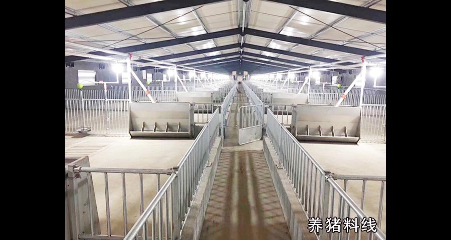 扬州自动化养猪设备厂 欢迎来电 泊头市华农农牧机械供应