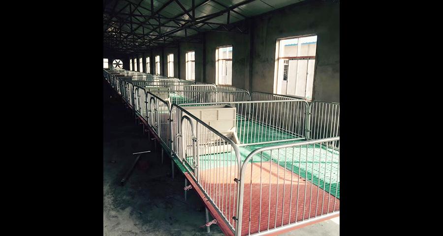 合肥养猪设备厂家供应 欢迎来电 泊头市华农农牧机械供应