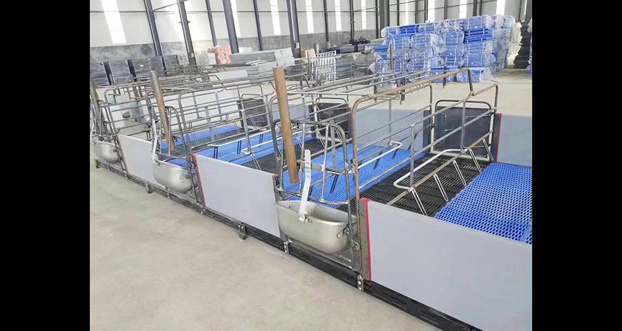 盐城现代化猪场设备厂家 真诚推荐 泊头市华农农牧机械供应