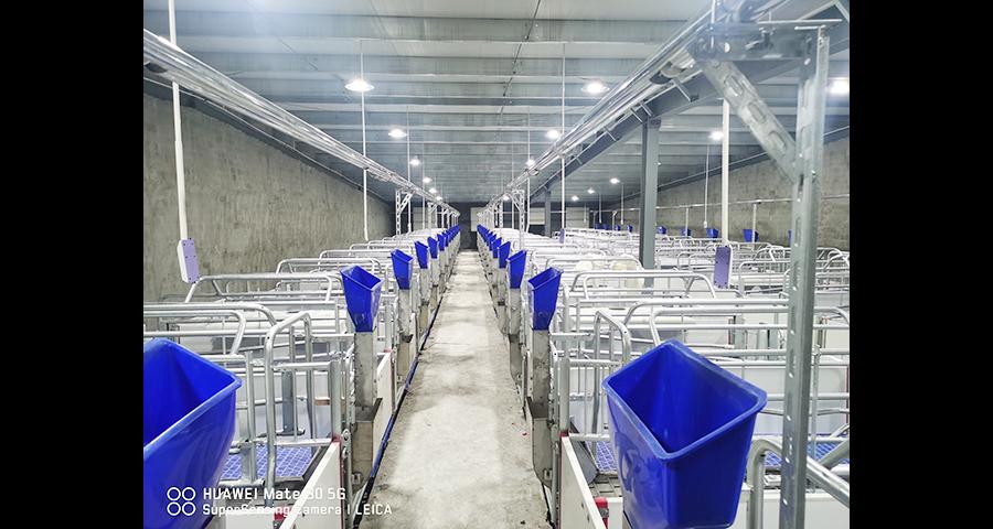 河南猪用养殖设备厂家供应 欢迎咨询 泊头市华农农牧机械供应