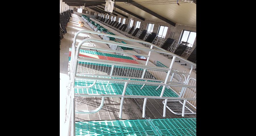 无锡猪场设备厂家,设备