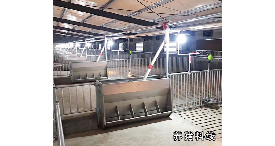 上海自动化养猪设备厂家供应 真诚推荐 泊头市华农农牧机械供应