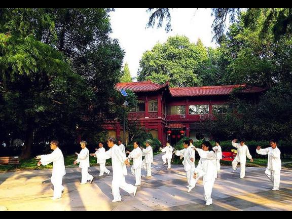 湖南海景旅居養生多少錢 上海淳商實業供應