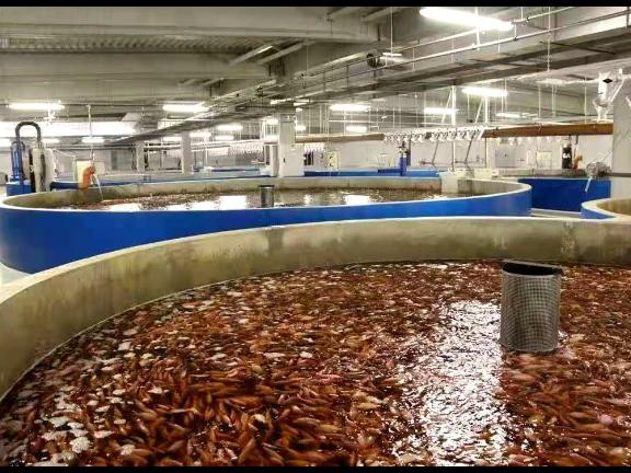 河北工业化水产养殖规模 宜兴市超众渔业机械供应