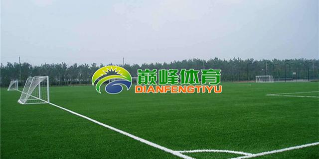 辽宁足球场草坪施工