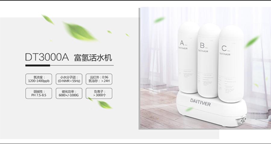 温州小型饮水机 贴心服务 深圳大地御泉净水科技供应