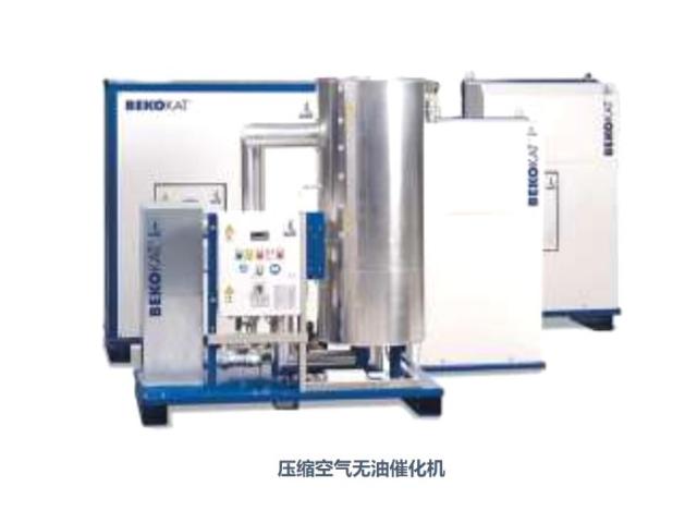 BEKO露点仪无热再生吸附式干燥机检修,气体净化及处理