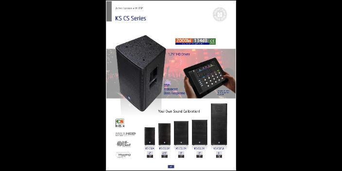 上海DCS-100MKTV音響價錢 來電咨詢「東莞精恒電子供應」