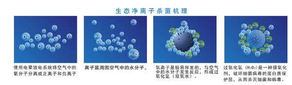 挂式空气净化器规格 贴心服务「帝思迈环境设备供应」
