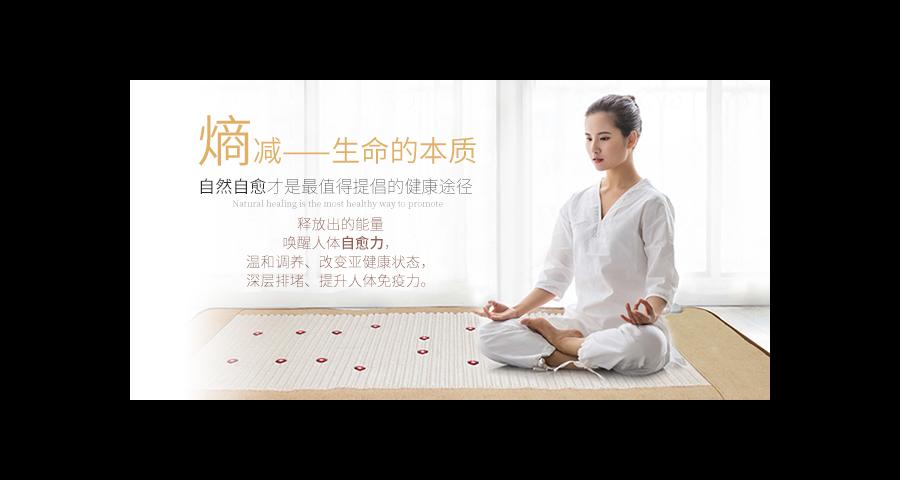 番禺区量子床哪里有 和谐共赢 广州富尔乐供应
