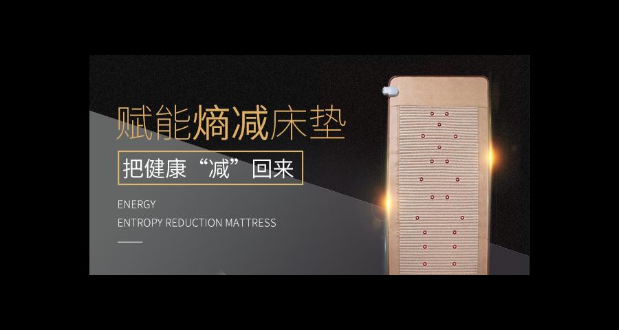 阳江量子床哪里有 诚信为本 广州富尔乐供应
