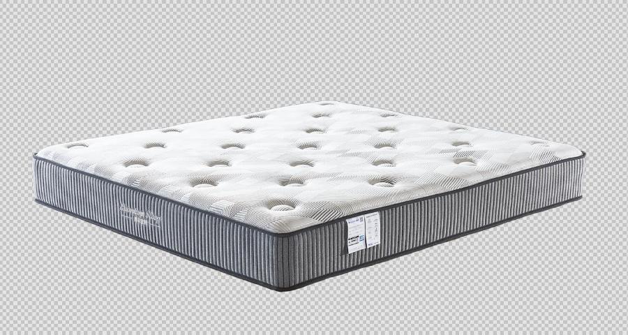 上海品牌量子床垫套 诚信服务 匠仙床垫供应