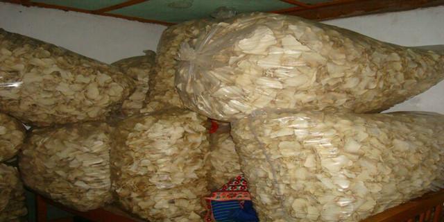 云南曲靖烤魔芋干片多少一吨 欢迎来电 云南坤达魔芋种植批发基地供应