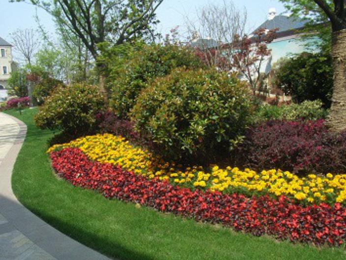 青浦區商務景觀綠化工程價格多少 歡迎咨詢「伏藝供」