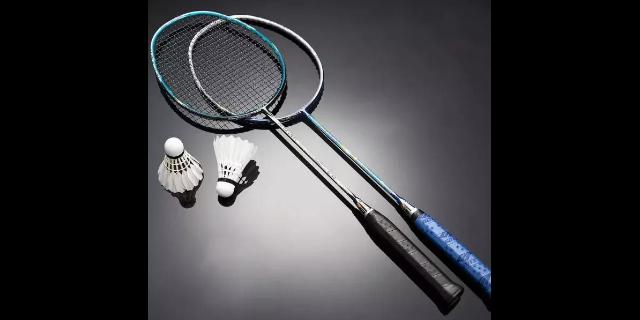 平涼新型羽毛球拍哪家好「甘肅湘南體育用品供應」