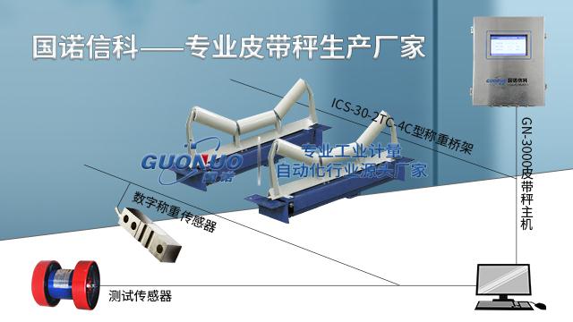 广东矿用电子皮带秤厂家排名 来电咨询「苏州国诺信息科技供应」