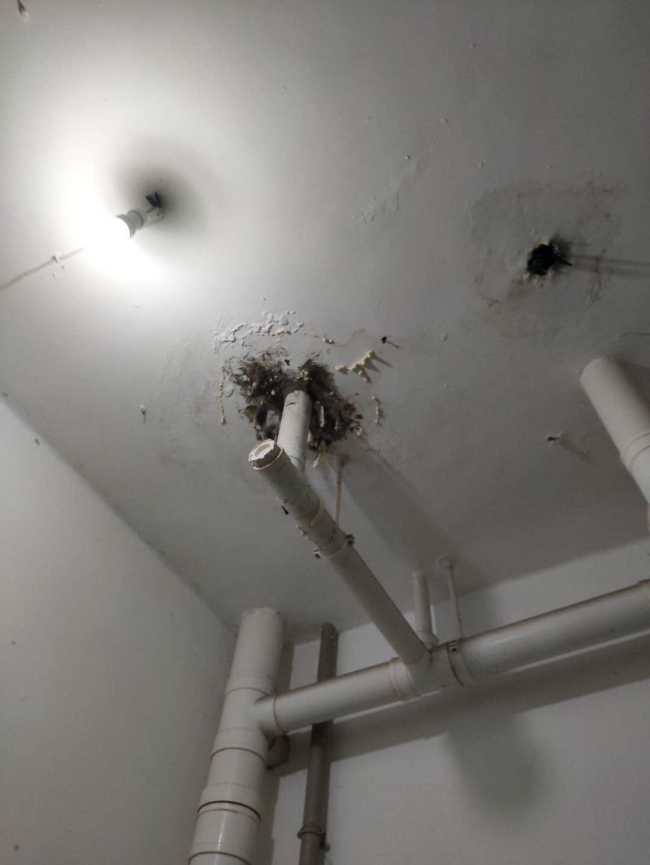 白云區衛生間不砸磚防水補漏工程,防水