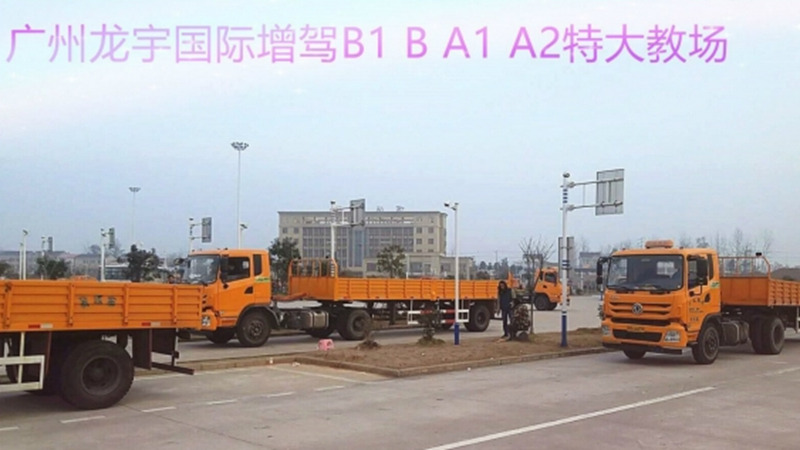 长途运输增驾A2多久拿证 广州龙宇国际供应