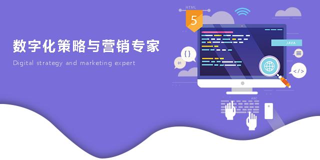 郴州专业搭建网站多久时间,网站
