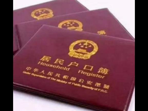 广州留学生落户咨询哪家专业 广州市海思教育咨询供应