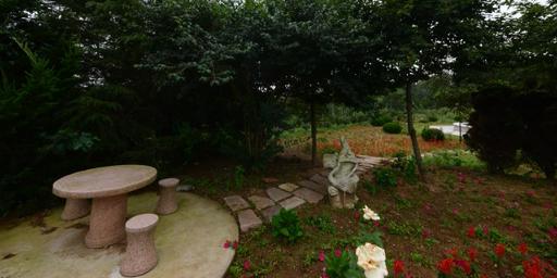 德州时带态园较好服务 来电咨询「荣成市海韵兴苗木种植供应」