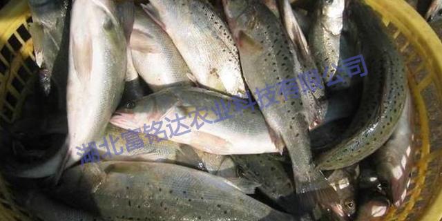 湖北富铭达农业科技有限公司