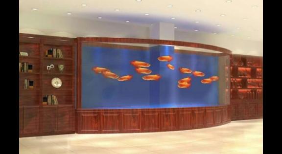 昆明風水魚缸私人訂制 客戶至上 云南鯨悅水族恒盈魚缸供應