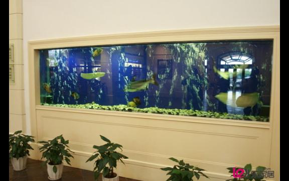昆明家庭生态鱼缸私人订做