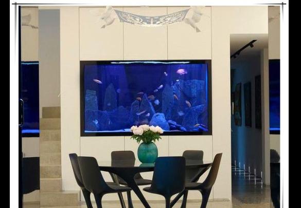 昆明免換水魚缸零售 推薦咨詢 云南鯨悅水族恒盈魚缸供應