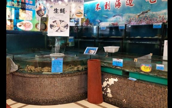 官渡区酒楼海鲜池批发公司 值得信赖 云南鲸悦水族恒盈鱼缸供应