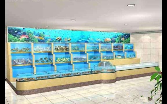 西雙版納五星酒店海鮮池私人定制 客戶至上「云南鯨悅水族恒盈魚缸供應」