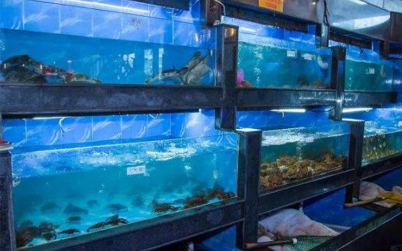 五星酒店海鮮池批發價格 誠信服務「云南鯨悅水族恒盈魚缸供應」